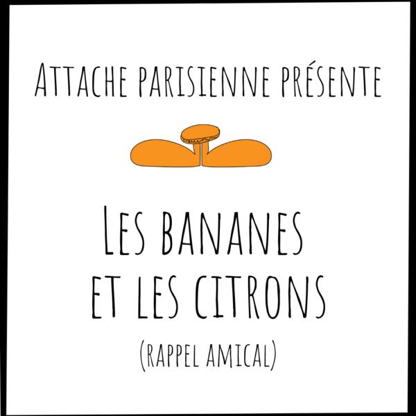 Les bananes et les citrons c'est ça l'amitié Attache Parisienne